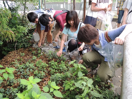 Students carefully choose wild plants which they can eat
